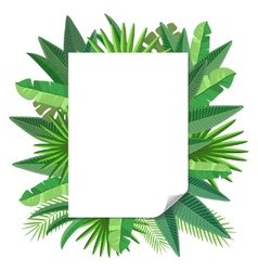 blank paper Tropical leaves vector image