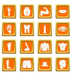 body parts icons set orange vector image