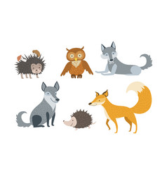 cute wild forest animals set hedgehog owl wolf vector image