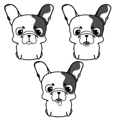 Set of french bulldog puppies vector image