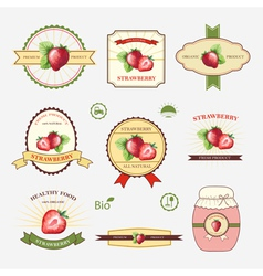 Strawberry set of label design and templates vector