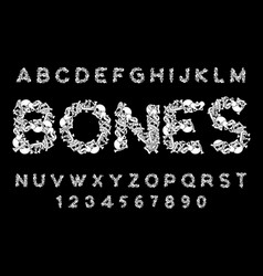 bones font letters anatomy skeleton abc skull and vector image vector image