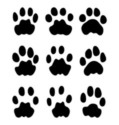 black footprints of leopard vector image vector image