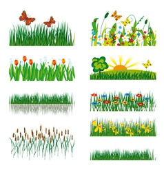 elements of nature vector image vector image