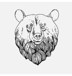 Thin vintage line bear vector image vector image