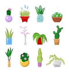 Potted Home Plants Set Decorative Houseplants vector image