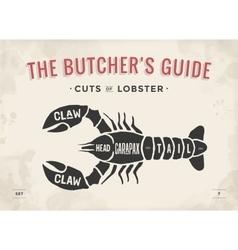 Cut meat set poster butcher diagram and scheme vector
