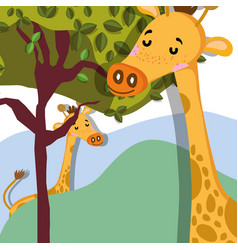 Cute giraffes wildlife cute cartoond vector