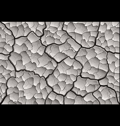 dry cracked mud with layered depth cracks vector image