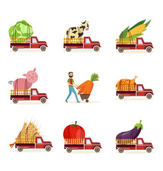farming harvest and delivery of fresh organic food vector image