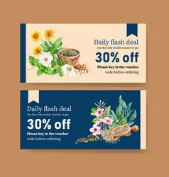 Herbal tea voucher design with sage chrysanthemum vector