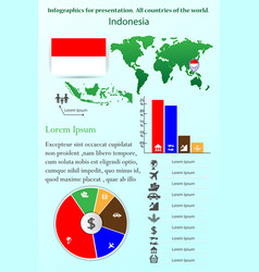 indonesia infographics for presentation all vector image