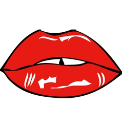 Mouth and lips vector image