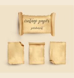 parchment vintage old paper vector image