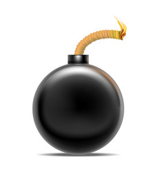 Realistic detailed 3d bomb fire vector