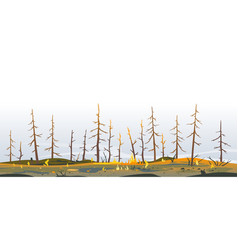 Trees after forest fire nature vector