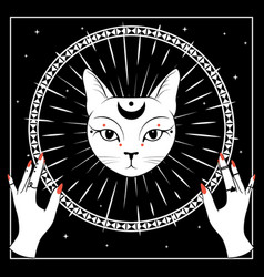 white cat face with moon on night sky with vector image