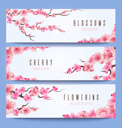 wedding banners template with spring japan sakura vector image