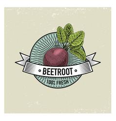 beetroot vintage set of labels emblems or logo vector image vector image