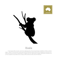 black silhouette of koala on white background vector image