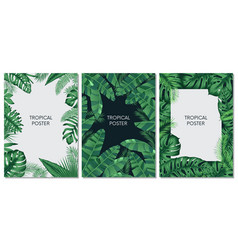 Design cards and banners with exotic leaves vector