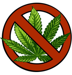 no marijuana symbolic sign red circle green leaf vector image