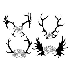 set black and white silhouettes deer and elk vector image