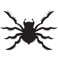 black spider silhouette vector image