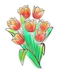 Watercolor tulips bouquet vector image vector image