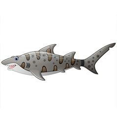 close up tiger shark vector image