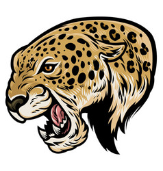Angry aggressive leopard vector