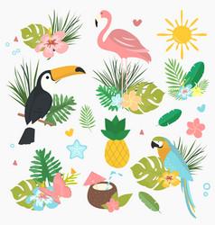 Cartoon set of exotic tropical vector