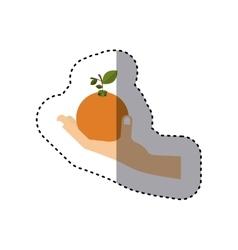 Colorful sticker of hand holding orange fruit vector