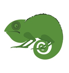 Green iguana character vector