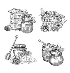 piles of hand drawn honey elements set vector image