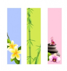 Spa banners vector