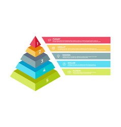 step 3d infographic isometric pyramid business vector image