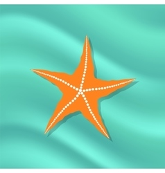 Caribbean Starfish on Azure Background vector image vector image