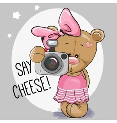 Cute cartoon Teddy Bear Girl with a camera vector image