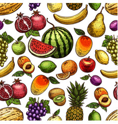 sketch seamless pattern exotic fruits vector image
