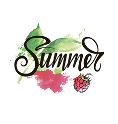 summer inscription on a bright background vector image