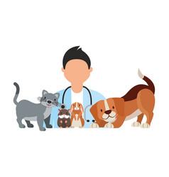 veterinary clinic petcare vector image