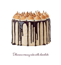 delicious creamy cake with chocolate vector image vector image
