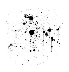 black ink splatter background isolated on white vector image
