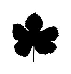 hop leaf vector image vector image