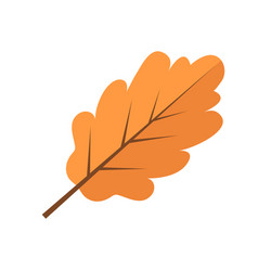 oak yellow autumn leaf icon flat style isolated vector image