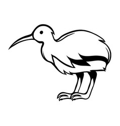 black and white bird kiwi vector image