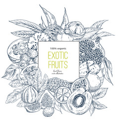 Exotic fruits square banner vector