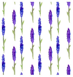 lavender seamless pattern in watercolor pattern vector image