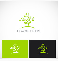 Plant tree organic botany nature logo vector